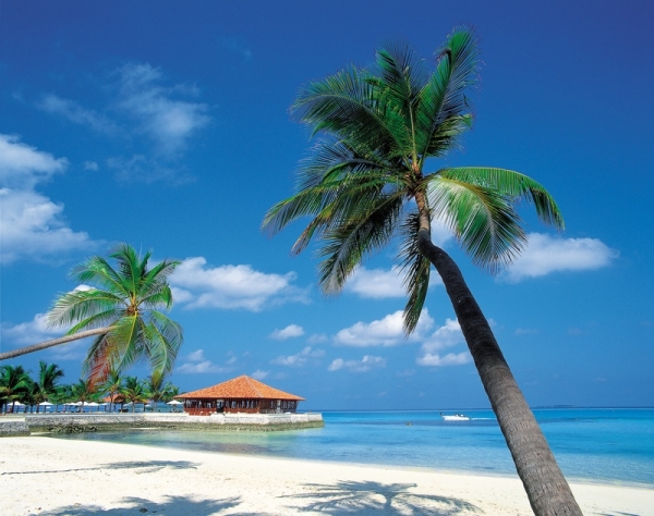 karibi Klopajmo na ulici: Idemo na Karibe