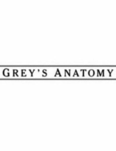 """Serija četvrtkom: """"Grey's Anatomy"""""""