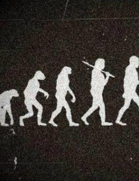 Cigla u glavi: Evolucija revolucije