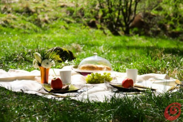 piknik05 Stranac u svom gradu