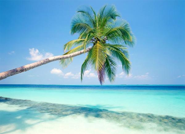 slika 157 Letnji deluks: Najlepše plaže sveta
