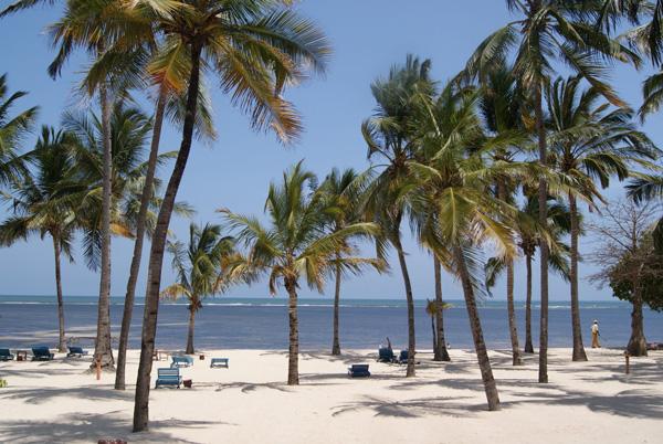 slika 624 Letnji deluks: Najlepše plaže sveta