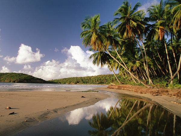 slika 717 Letnji deluks: Najlepše plaže sveta