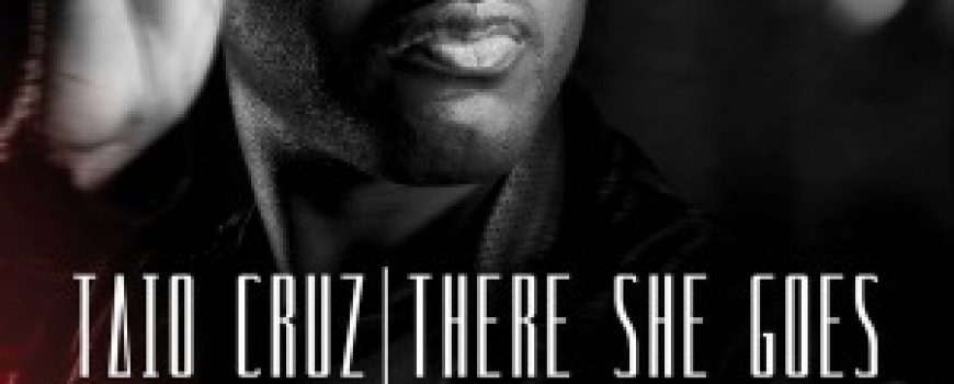 """The Best of House: Taio Cruz """"There She Goes"""""""