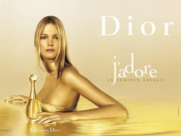 slika 176 Modni CV: Christian Dior
