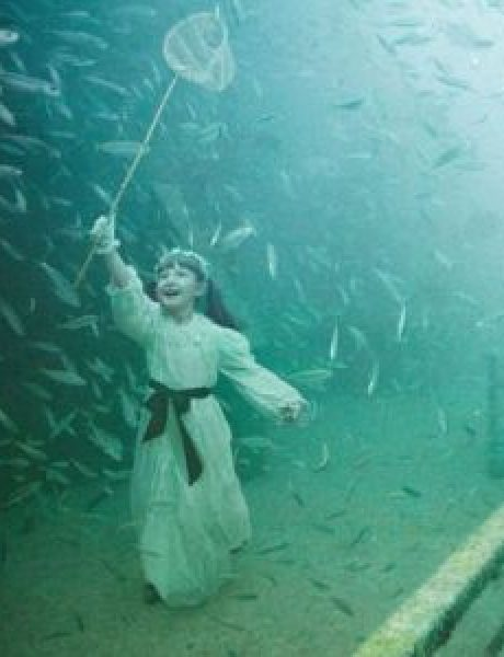 Andreas Franke: Život ispod površine