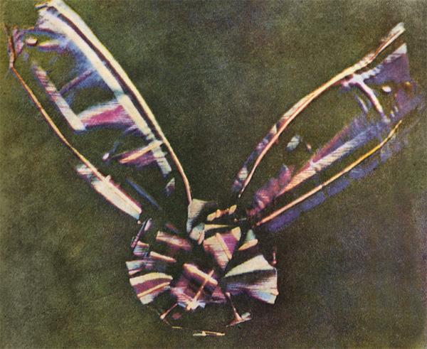 Slika 217 Ljudi koji su pomerali granice: James Clerk Maxwell
