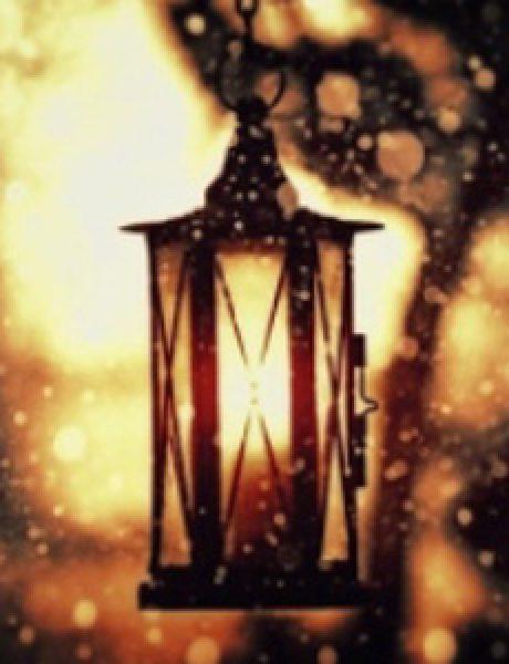 WannabeLand: Duga, duga noć