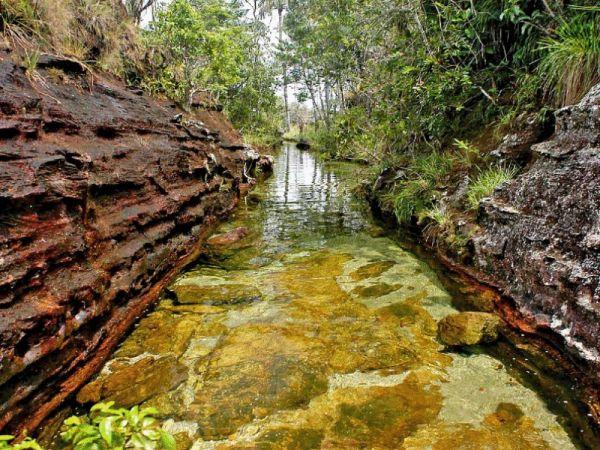 Slika 277 Kolumbijski biser: Kanjo Kristales