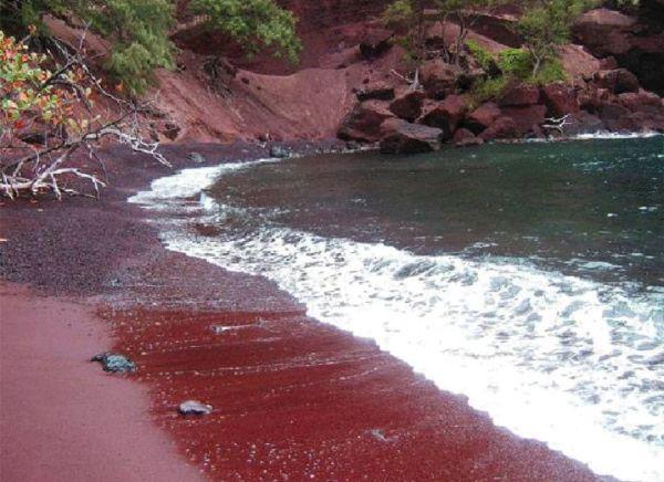Slika 443 Najlepše plaže u boji