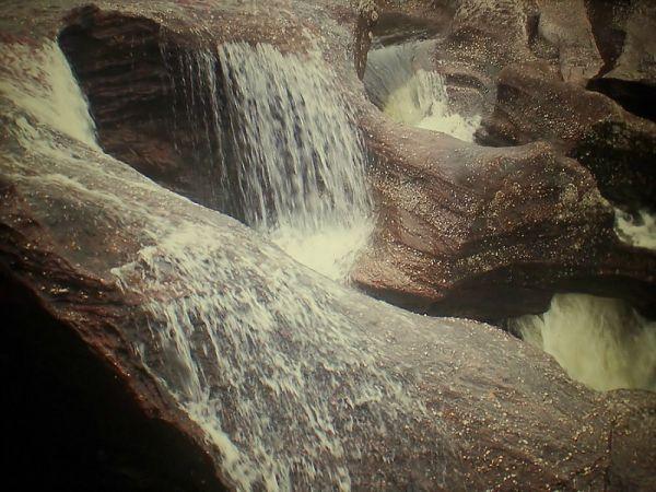 Slika 815 Kolumbijski biser: Kanjo Kristales
