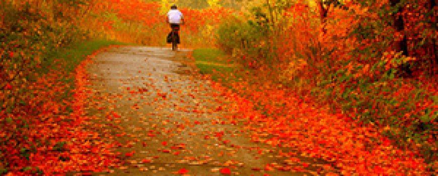 Deset najboljih pesama o jeseni