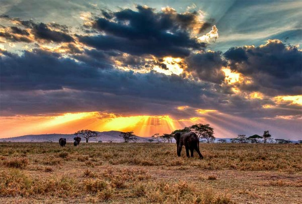Slika 102 Najlepša mesta Afrike