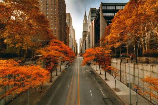Slika 255 Jesen u gradu