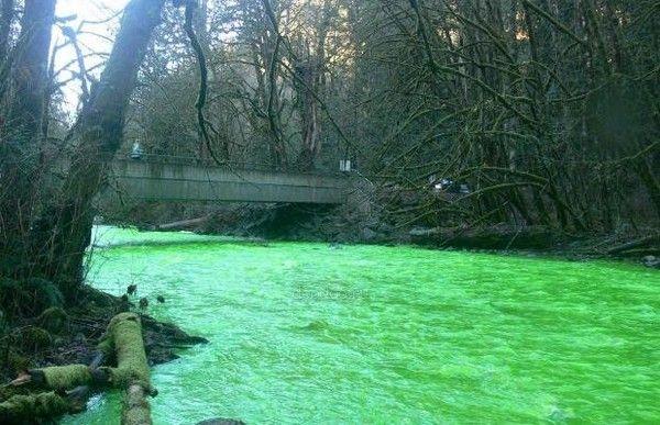 Slika 271 Čudo Kanade, neonska reka