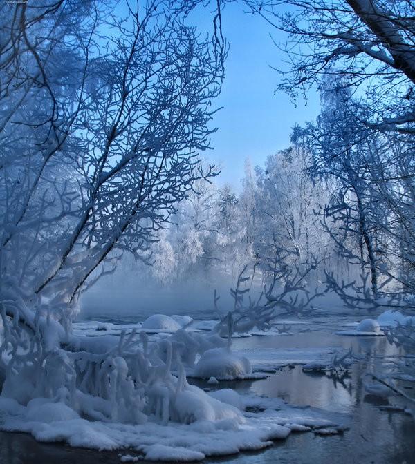 Slika 273 Citati o zimi: Ništa ne peče kao hladnoća