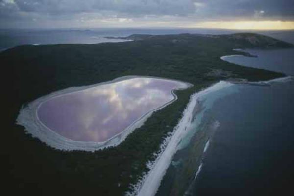 Slika 292 Jezero Hilijer: Nestvarno ružičasto