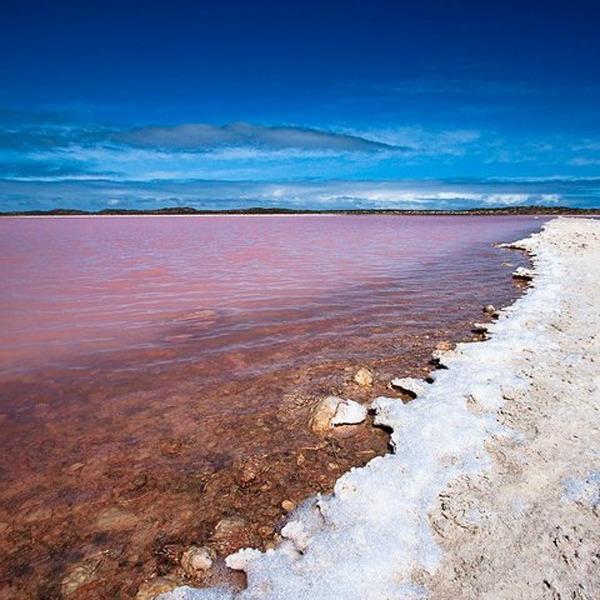Slika 374 Jezero Hilijer: Nestvarno ružičasto