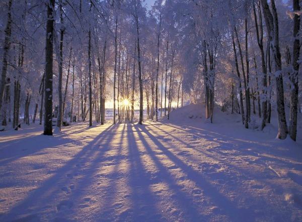 Slika 449 Citati o zimi: Ništa ne peče kao hladnoća