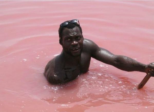 Slika 456 Jezero Hilijer: Nestvarno ružičasto