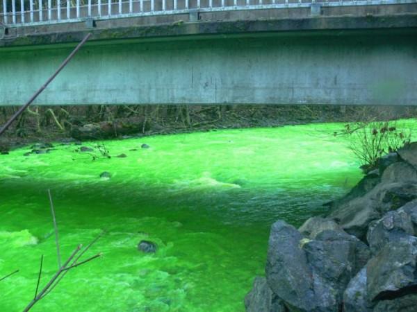 Slika 630 Čudo Kanade, neonska reka
