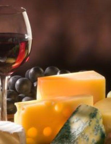 III Mediteraneo festival vina, gastronomije i vinskog turizma