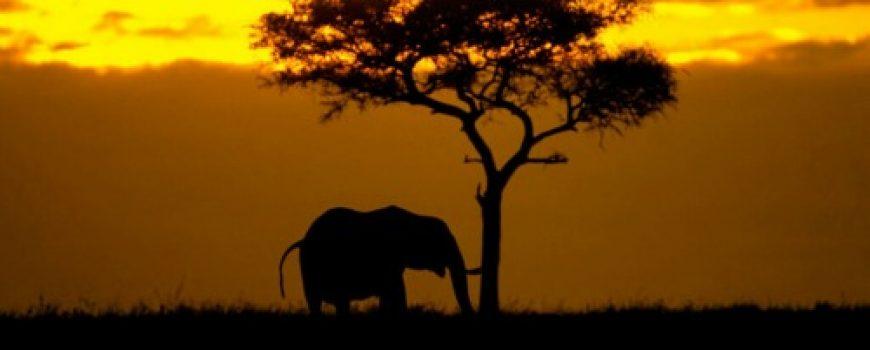 Najlepša mesta Afrike