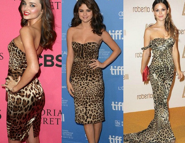 slika 24 Leopard je in!