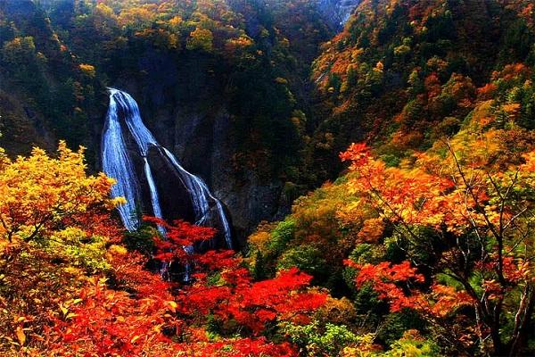 slika 324 Magična jesen u Japanu