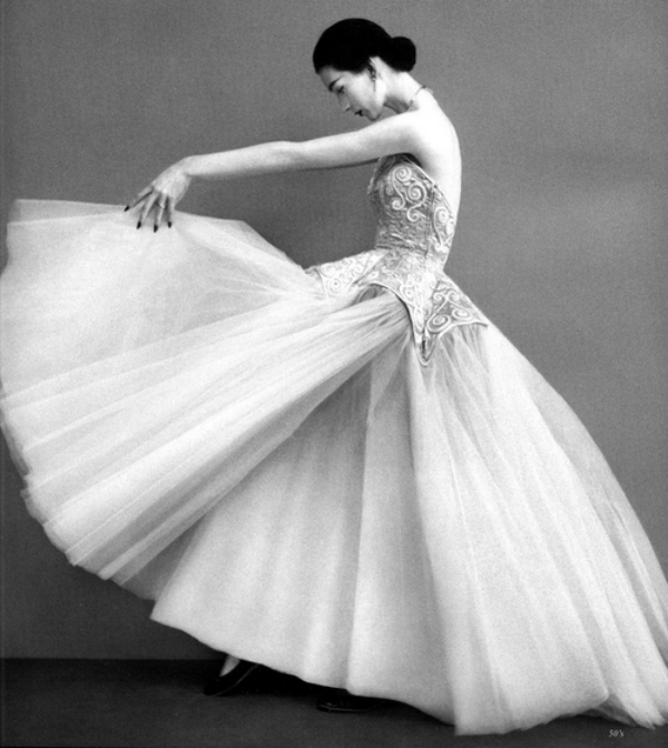 slika 526 Dovima: Neponovljiva aristokratska lepota
