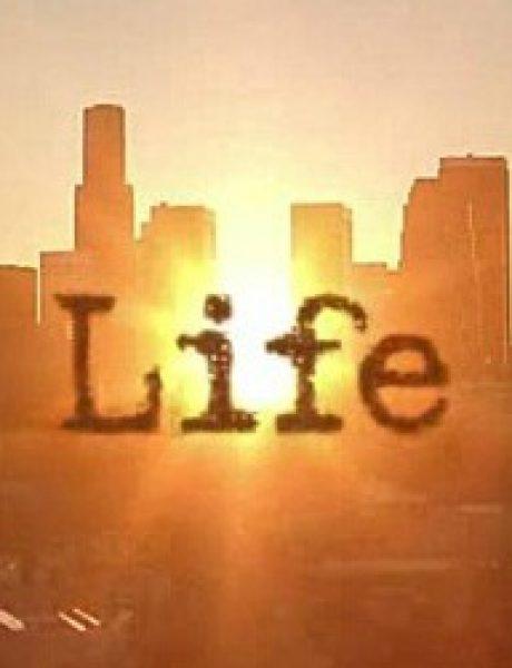 Ono čemu nas uči život