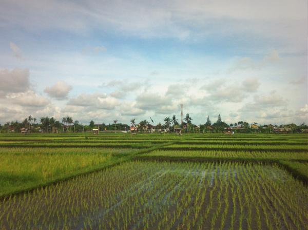 photo 4 Hiishii Photo: Bali putopis