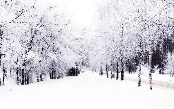 slika 113 Zima, zima, e pa šta je!