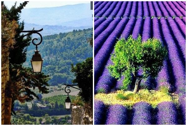 Slika39 Najlepše od Evrope: Francuska, zemlja sireva i dobrih vina