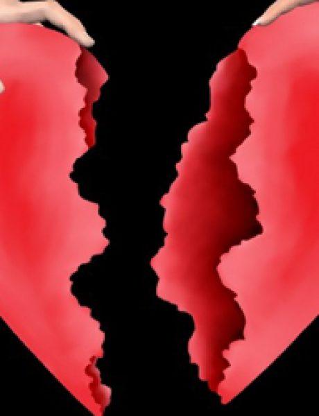 Google Facts: Što ja nemam tri srca?