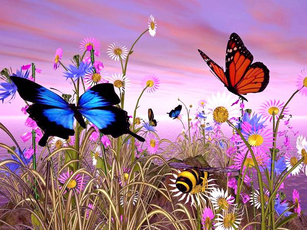 Slika 39 Tajna krilatih bića: Priča o leptiru