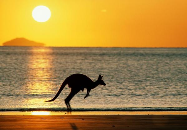 Australija Top 10 najboljih mesta za studiranje u inostranstvu