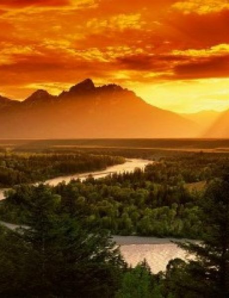 Sedam neobičnih izbora koji vam mogu promeniti život