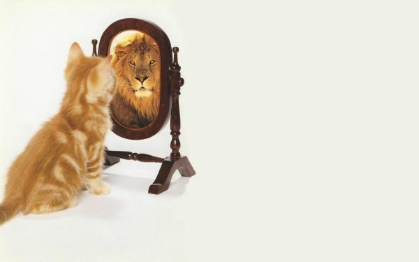 slika 29 Kako da prestanete da omalovažavate sebe?