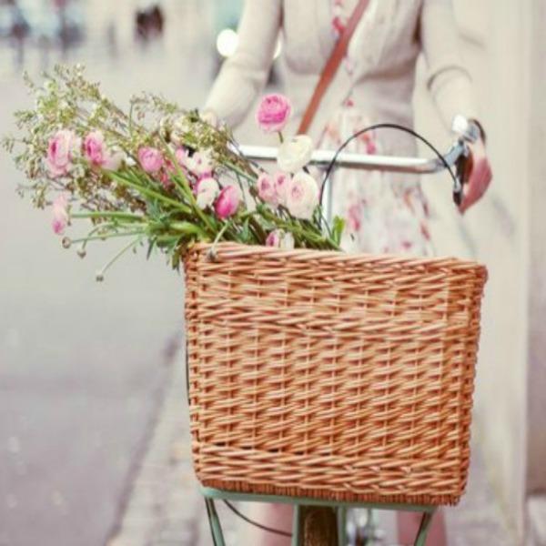 Bicikla sa korpom Budite lovac na zmajeve ovog proleća!