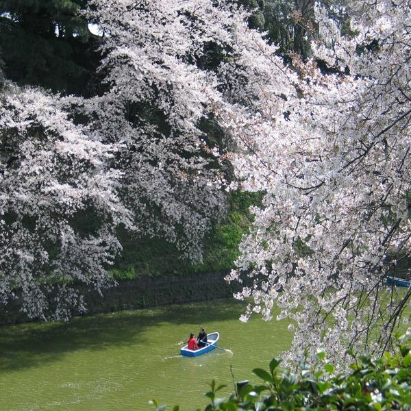 Rekom plovi èamac Sedam geografskih činjenica o Japanu