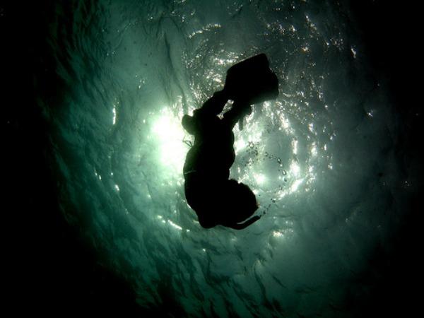 Slobodno ronjenje Bahami Uzbudljiva putovanja