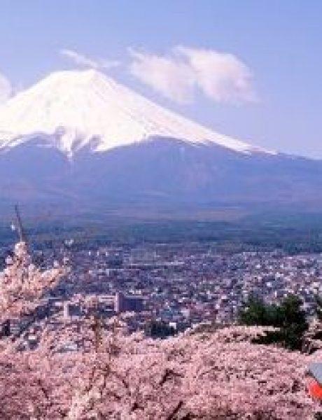 Snimi ovo: Zanimljive činjenice o Japanu