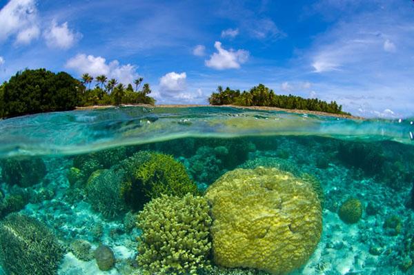 Bogat podvodni svet Vodič kroz najmanje zemlje sveta