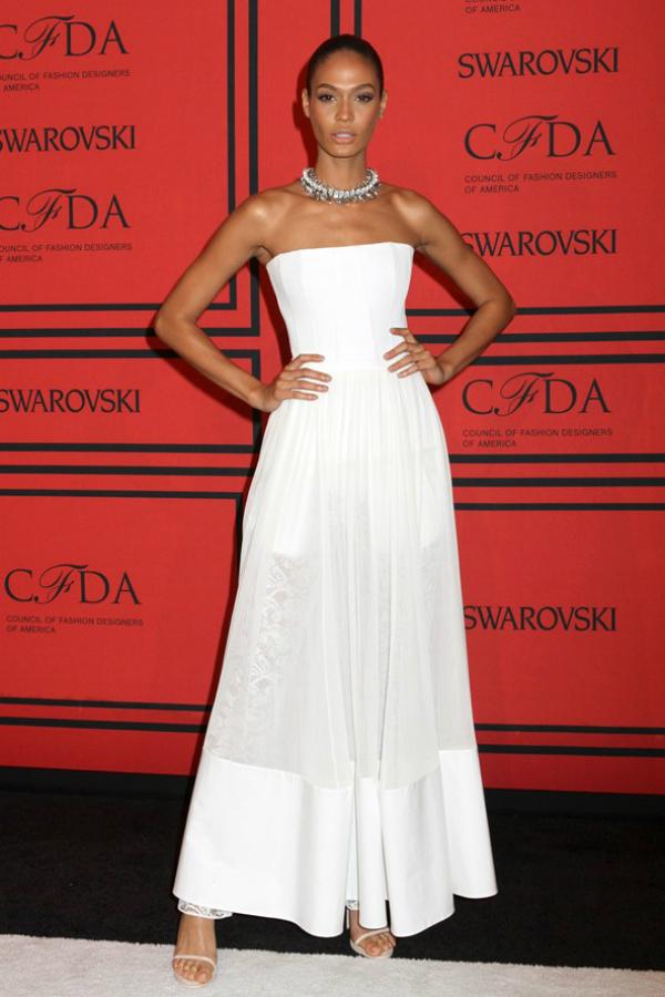 Joan Smalls Fashion Police: CFDA Awards 2013