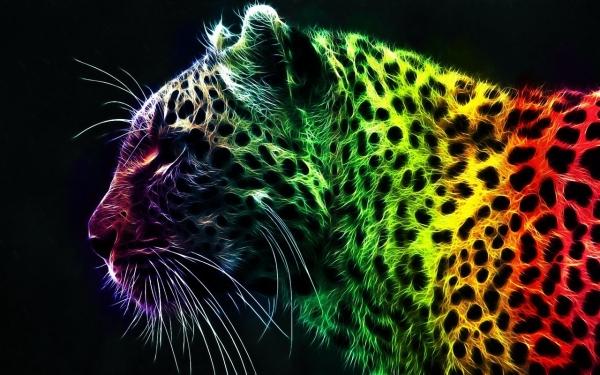 Leopard u bojama duge Prijatelj s olujom, brat s grmljavinom