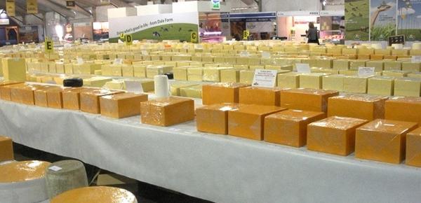 Gomila sira na standu Deset najboljih festivala hrane