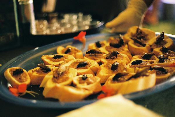 Kanapei sa skakavcima Deset najboljih festivala hrane