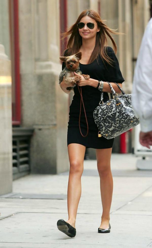 Miranda Kerr 5 Sve torbe: Miranda Kerr