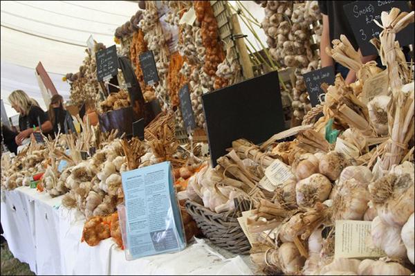 beli luk Deset najboljih festivala hrane